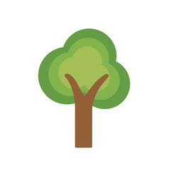 beauty ecological and natural tree icon vector image