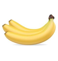 Banan 002 vector