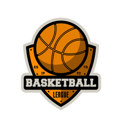Basketball professional league vintage label vector