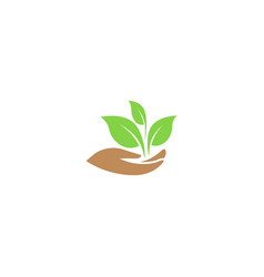 Leaves in hand for plant care logo vector