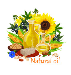 Natural oil of orgin plants and nuts poster vector