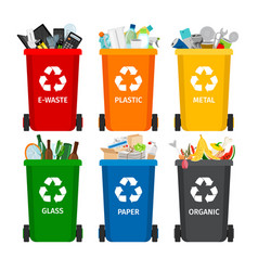 Trash in garbage cans with sorted garbage vector