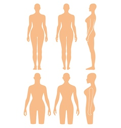 Woman mannequin outlined silhouette torso vector image