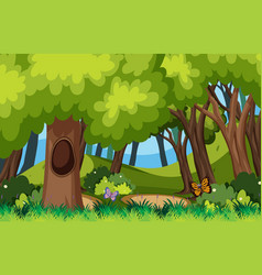 Background scene with butterflies in forest vector