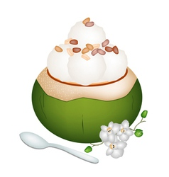 Coconut Ice Cream with Nuts on White Background vector