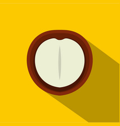 macadamia nut icon flat style vector image