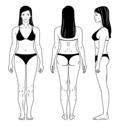 outlined standing woman vector image
