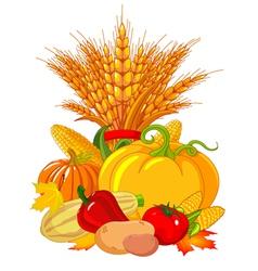 Seasonal design with plump pumpkins wheat vector