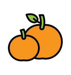 Tangerine orange chinese lunar new year filled vector