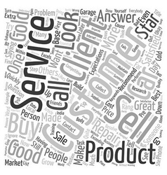 What is Customer Service text background wordcloud vector image