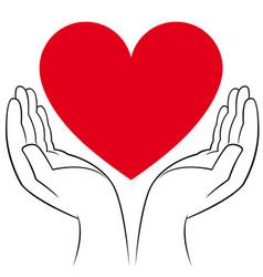 heart in human hands vector image