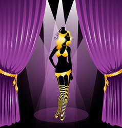 curtain cabaret vector image