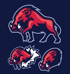 wild hog mascot vector image vector image