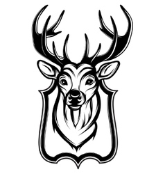a stag head as a trophy vector image