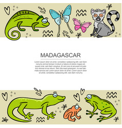 banner template with set madagascar animals vector image