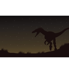 Eoraptor in fields at the night silhouette vector image