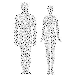 human line vector image