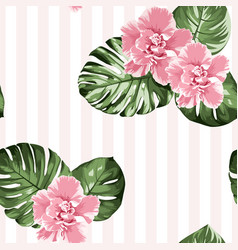 pink camelia flowers green monstera leaves on vector image