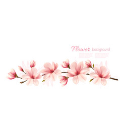 Spring nature background with pink magnolia vector