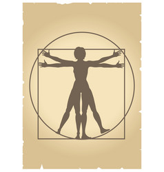 Vitruvian woman vector
