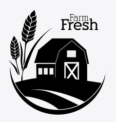 Farm design vector