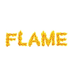 Flame Fire typography Burning letters fiery vector image