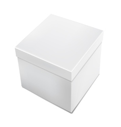 3d realistic white packaging box isolated vector image