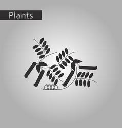 Black and white style icon of natural pisum vector