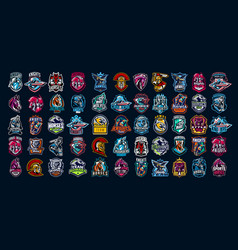 Collection emblems knights warriors vector