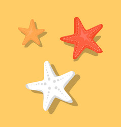 starfish or sea stars star-shaped echinoderms set vector image