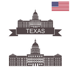 state of texas vector image