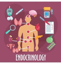 Endocrinology and endocrine system flat icon vector image
