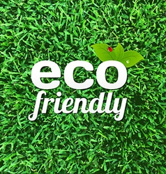 Eco friendly poster vector