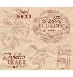 Tobacco brown vector image