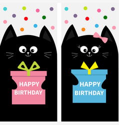 black cat family couple with gift box bow flyer vector image