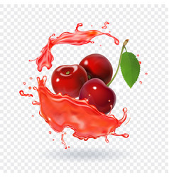 Cherry juice realistic fresh berry fruit splash vector