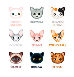 Cute cat icons set i vector