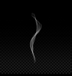 realistic smoke wave from cigarette or vapor vector image