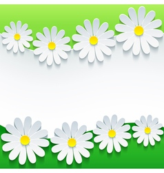 Floral green background 3d flower chamomile vector image