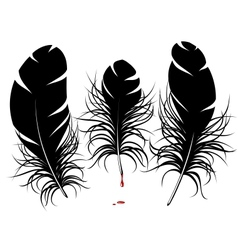 feather silhouette vector image