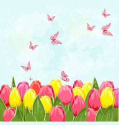 field of blooming tulips with flying butterflies vector image