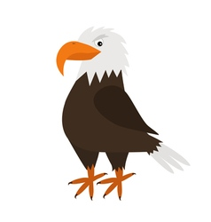 Eagle Hawk Big beak Beautiful Exotic bird icon vector image