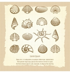 Vintage notebook page with sea shells vector image