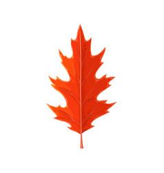 Autumn maple leaf cartoon isolated icon vector