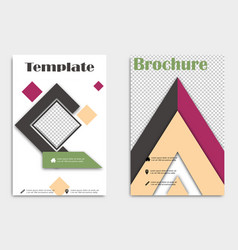 brochure template layout cover design annual vector image