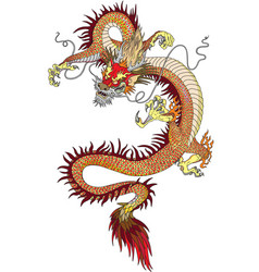 chinese dragon tattoo vector image