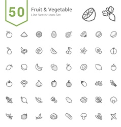 Fruit and Vegetable Line Icon Set vector image
