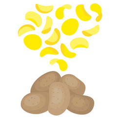 potatoes and potato chips vector image