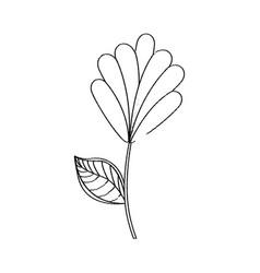 flower decoration natural sketch vector image