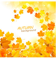Autumn leaf fall background vector image vector image